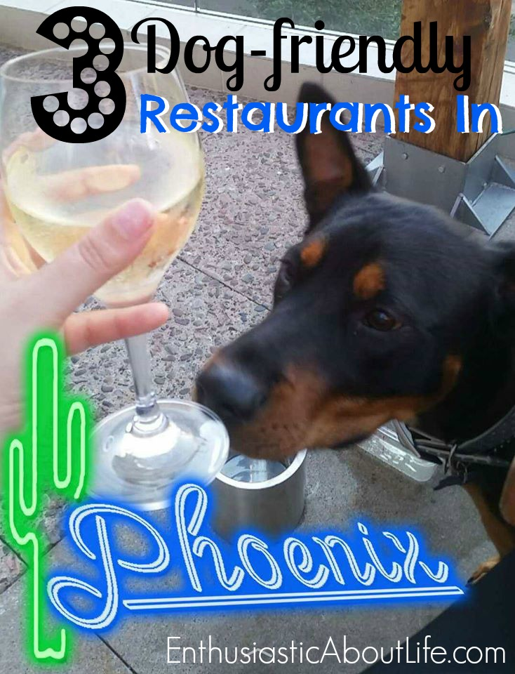 dog-friendly-restaurants